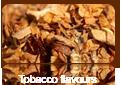 World Tobacco Asia Bali 2009